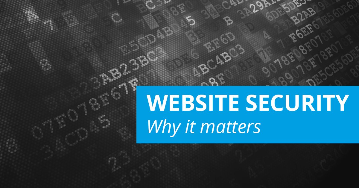 WEBSITE SECURITY Image