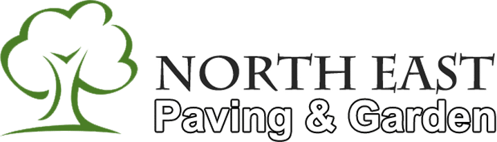 searchrise_showcase_northeast_v02